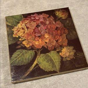 Kathryn White Hydrangea Canvas 12x12